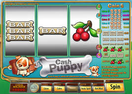 Play Cash Puppy - USA and International Players Welcome