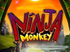 Play Ninja Monkey