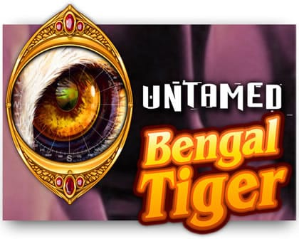 Untamed Bengal Tiger @ Casino Cruise